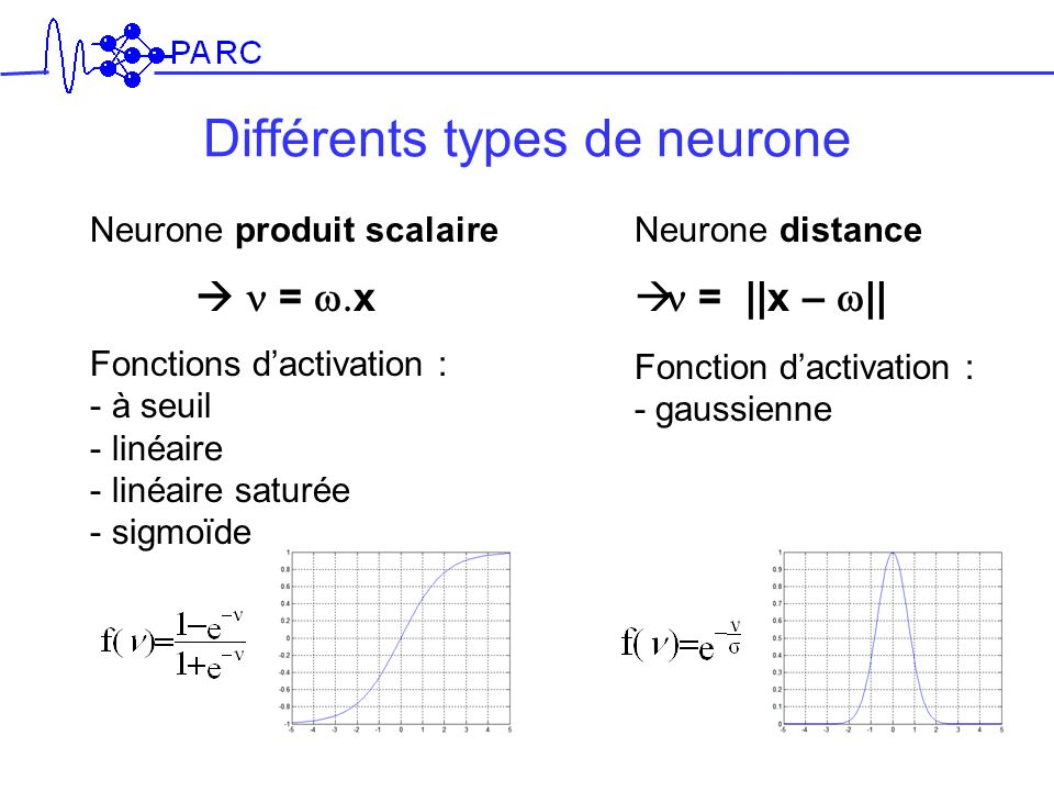 Différents types de neurone