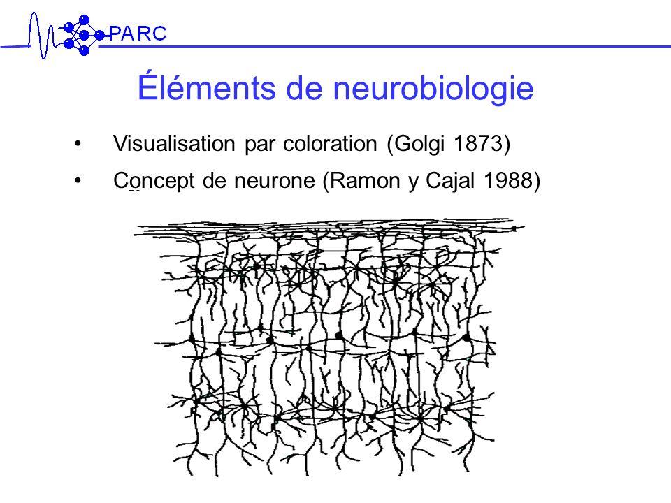 Éléments de neurobiologie