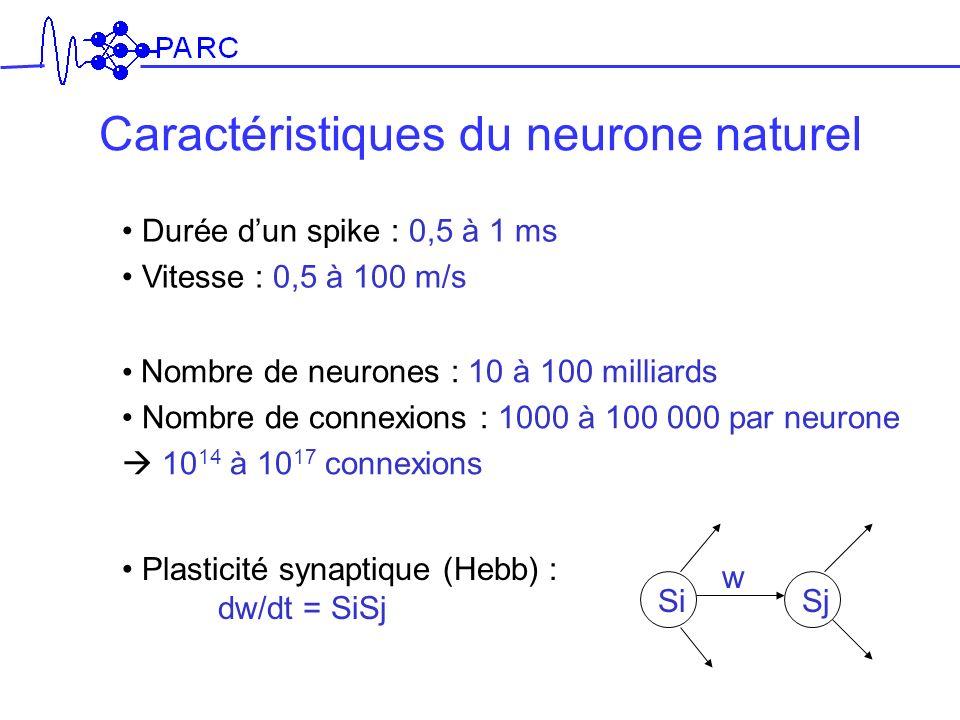 Caractéristiques du neurone naturel