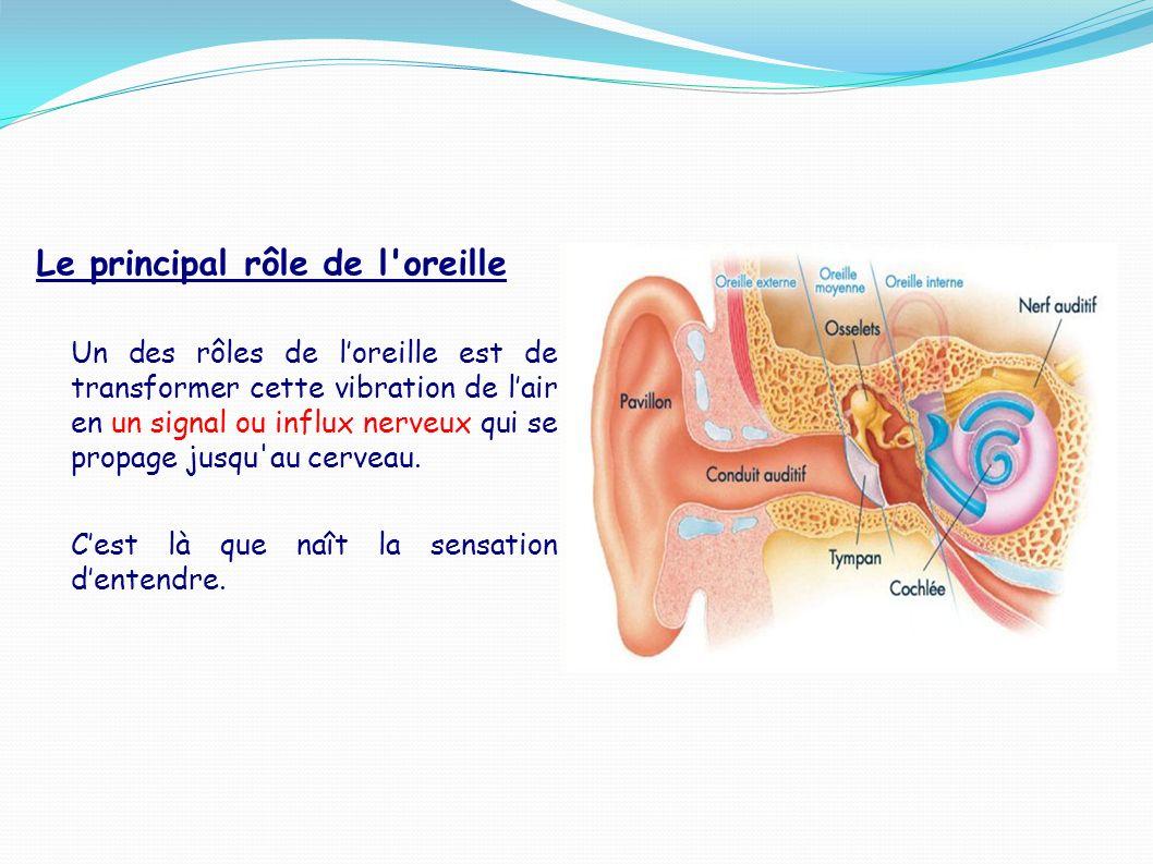 Le principal rôle de l oreille