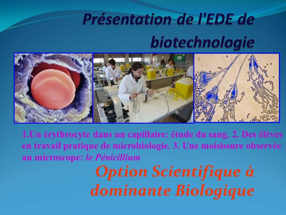 Présentation de l EDE de biotechnologie