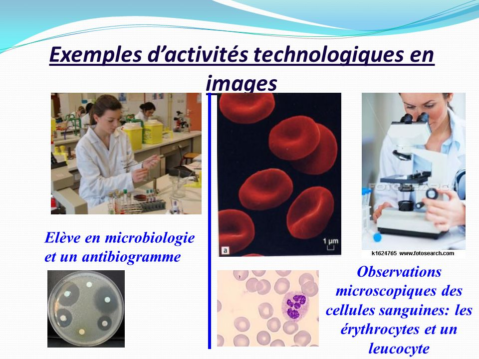 Exemples d'activités technologiques en images