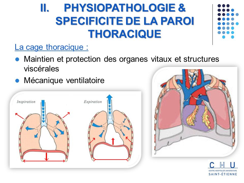PHYSIOPATHOLOGIE & SPECIFICITE DE LA PAROI THORACIQUE