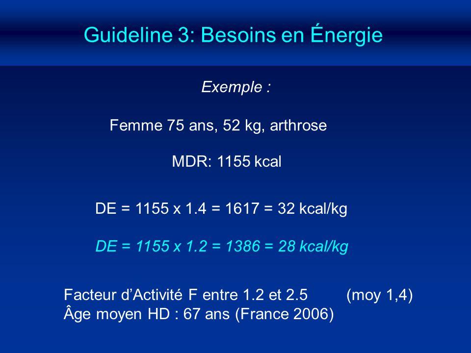 Guideline 3: Besoins en Énergie