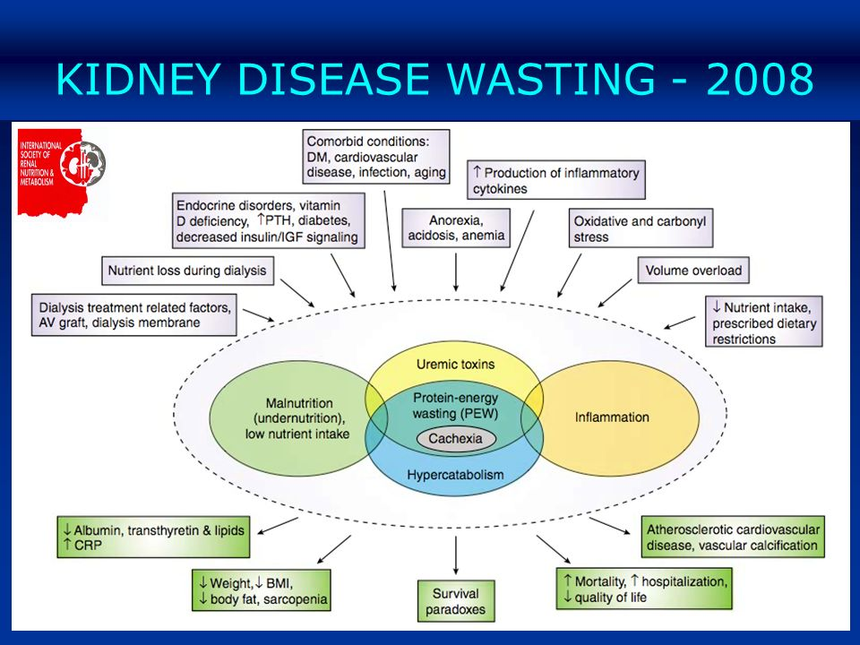 KIDNEY DISEASE WASTING - 2008