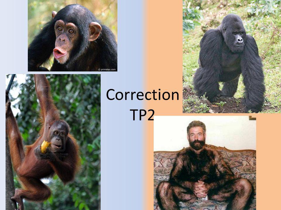 Correction TP2