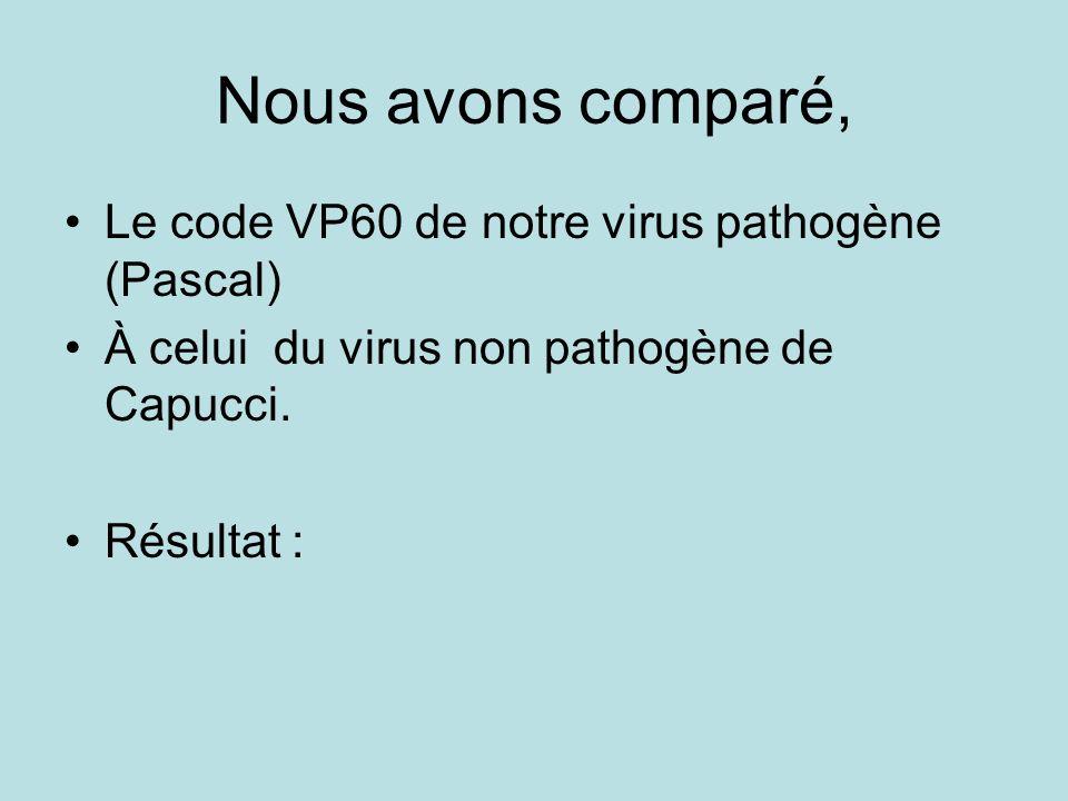 Nous avons comparé, Le code VP60 de notre virus pathogène (Pascal)