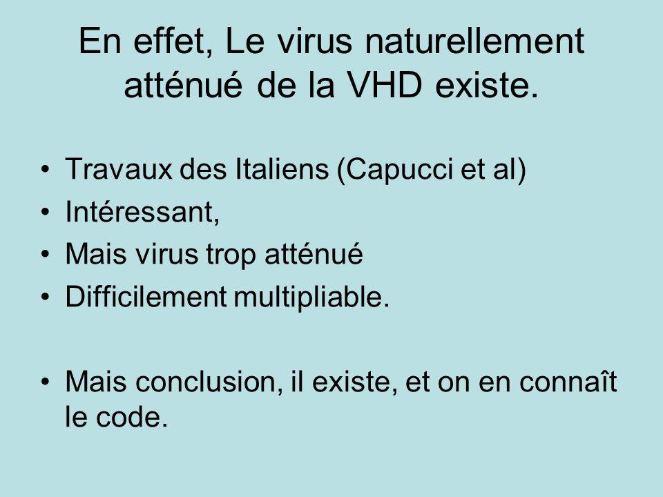 En effet, Le virus naturellement atténué de la VHD existe.