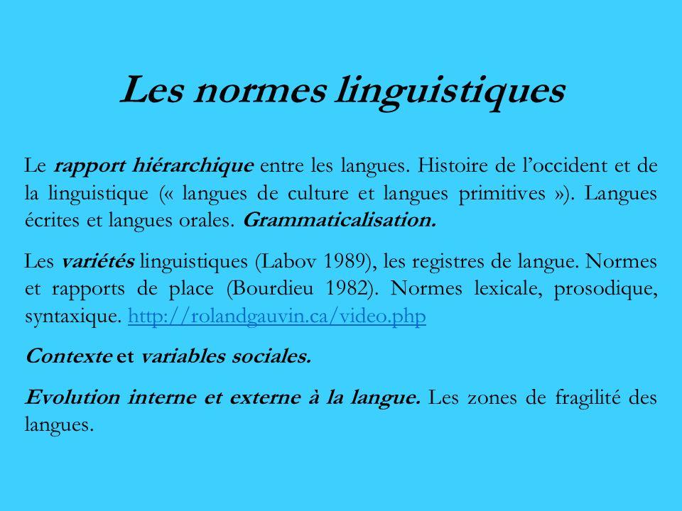 Les normes linguistiques