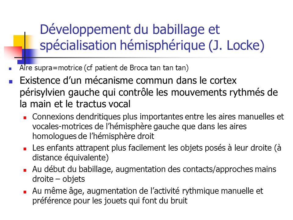 Développement du babillage et spécialisation hémisphérique (J. Locke)