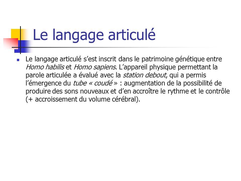 Le langage articulé