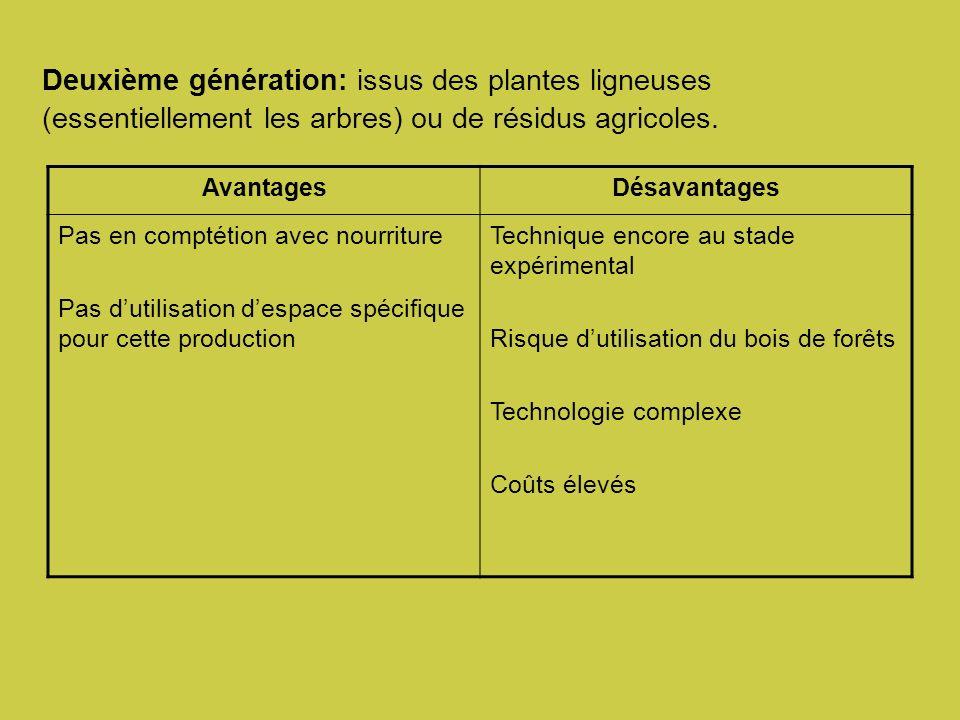 Deuxième génération: issus des plantes ligneuses (essentiellement les arbres) ou de résidus agricoles.