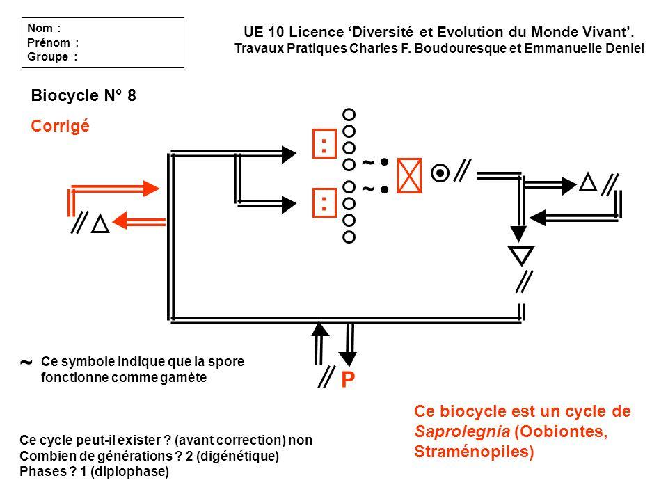 : : ~ ~ ~ P Biocycle N° 8 Corrigé