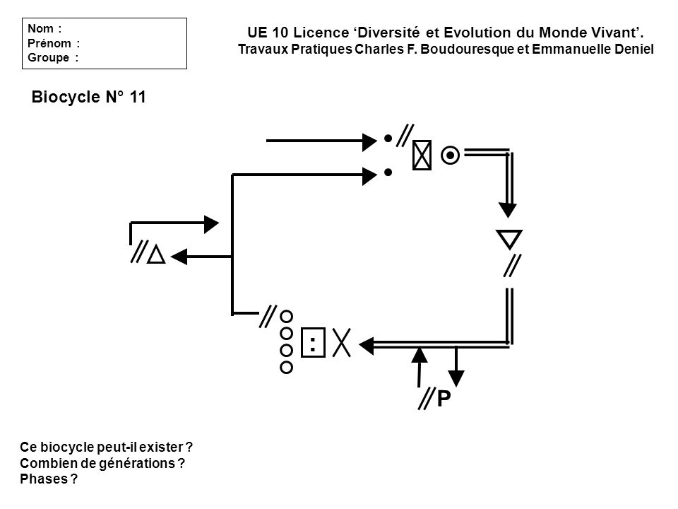 Nom : Prénom : Groupe : UE 10 Licence 'Diversité et Evolution du Monde Vivant'. Travaux Pratiques Charles F. Boudouresque et Emmanuelle Deniel.