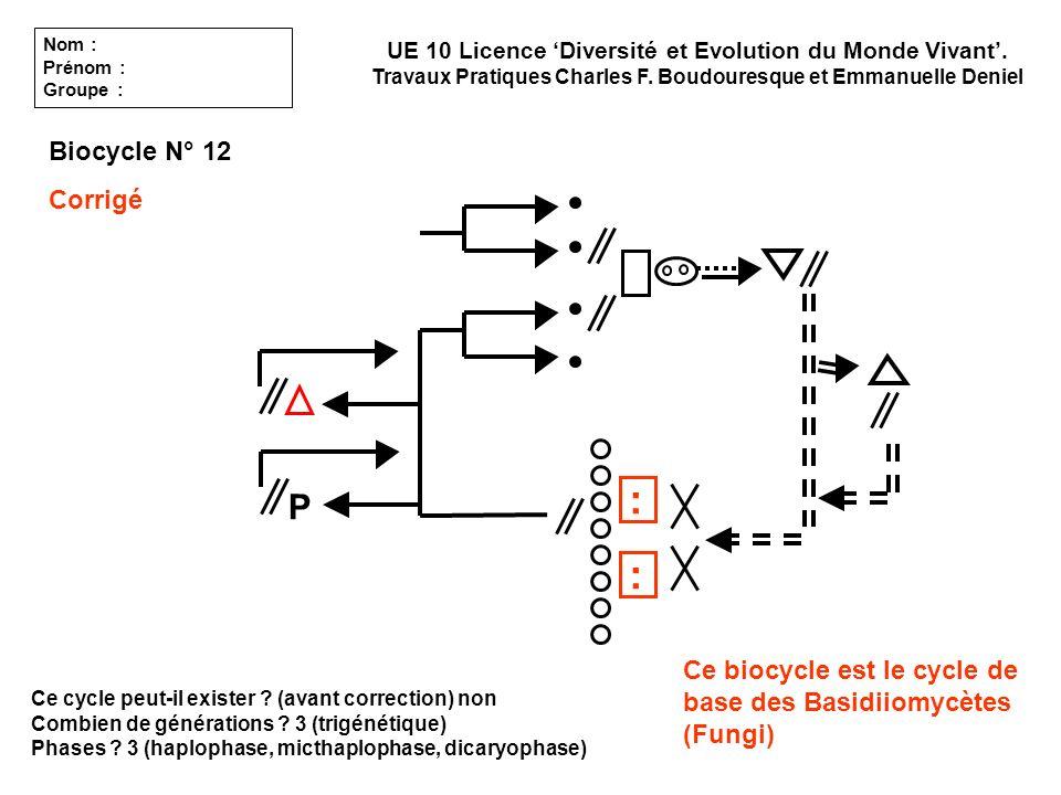 : : P Biocycle N° 12 Corrigé