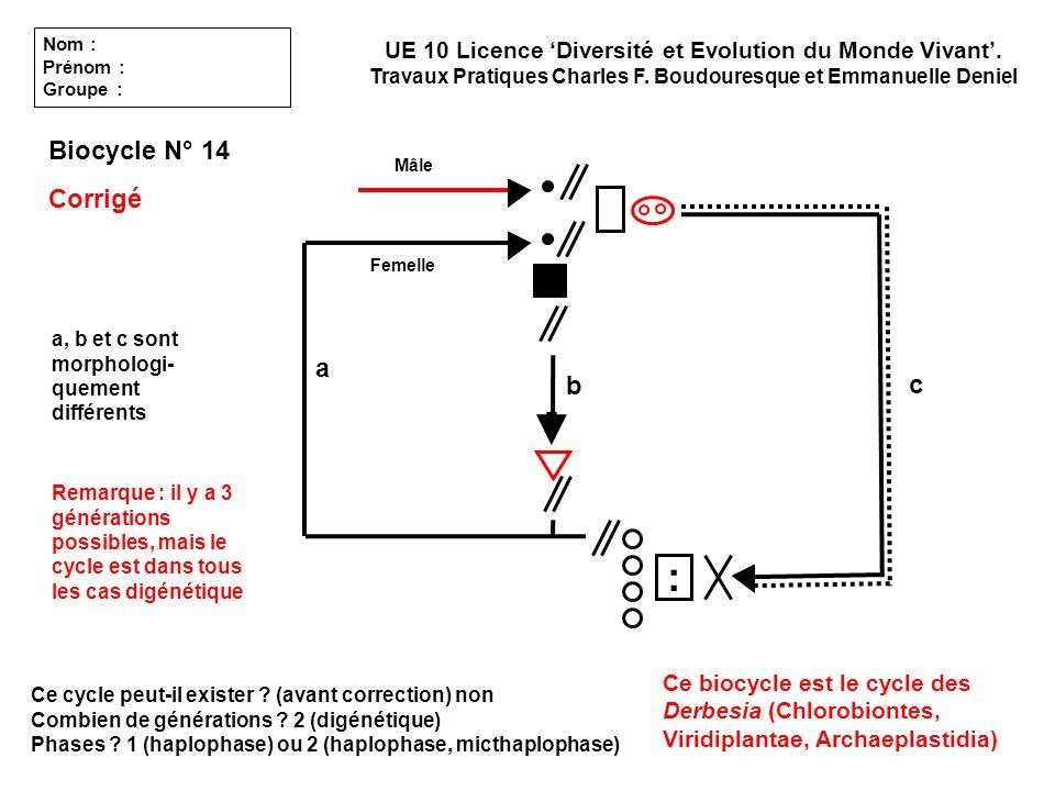: Biocycle N° 14 Corrigé a b c