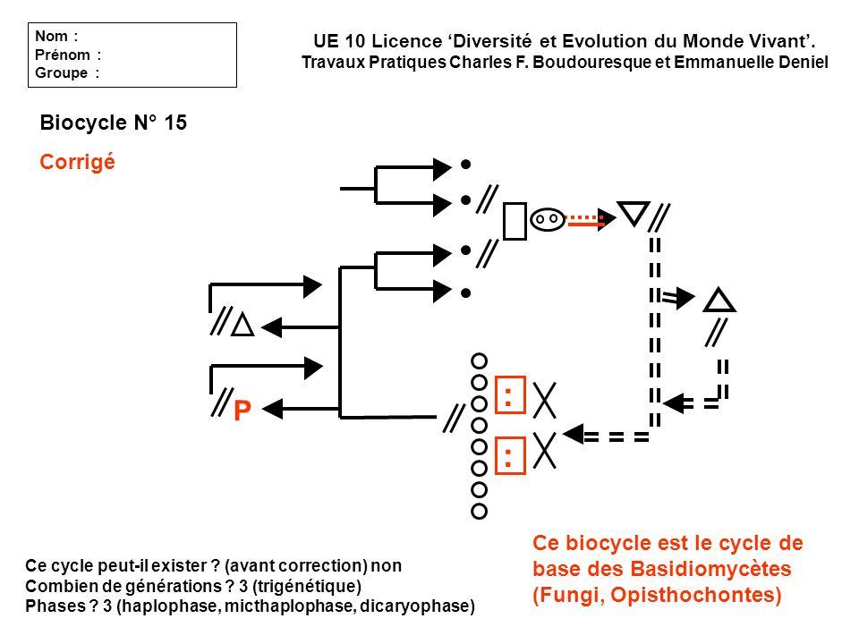 : : P Biocycle N° 15 Corrigé