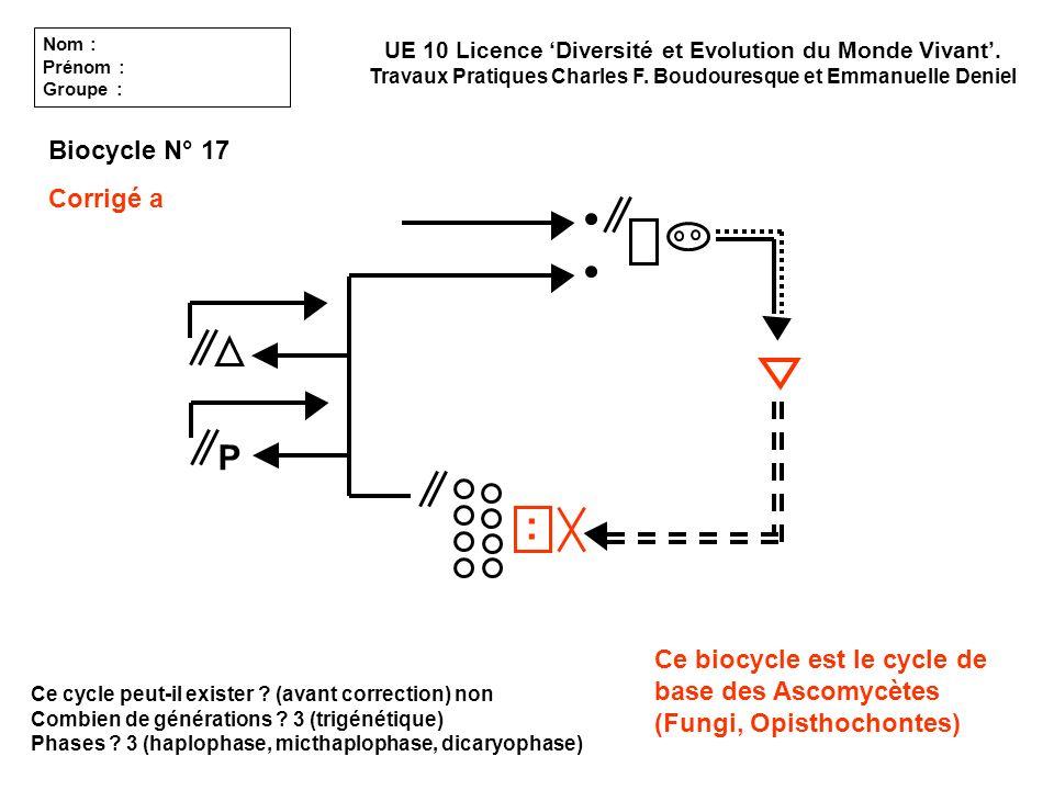 : P Biocycle N° 17 Corrigé a