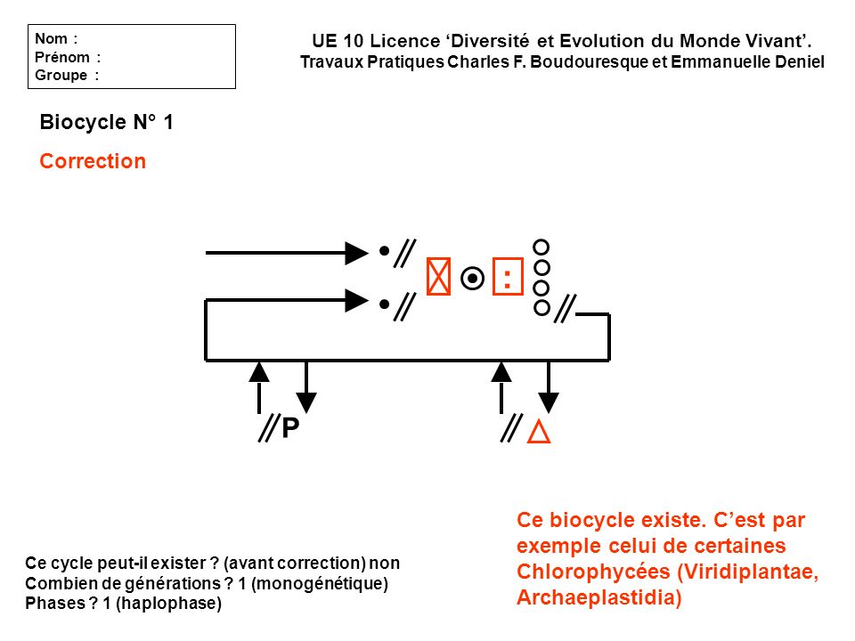 : P Biocycle N° 1 Correction
