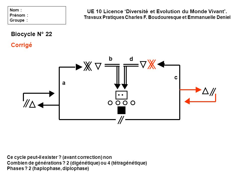 : Biocycle N° 22 Corrigé b d c a