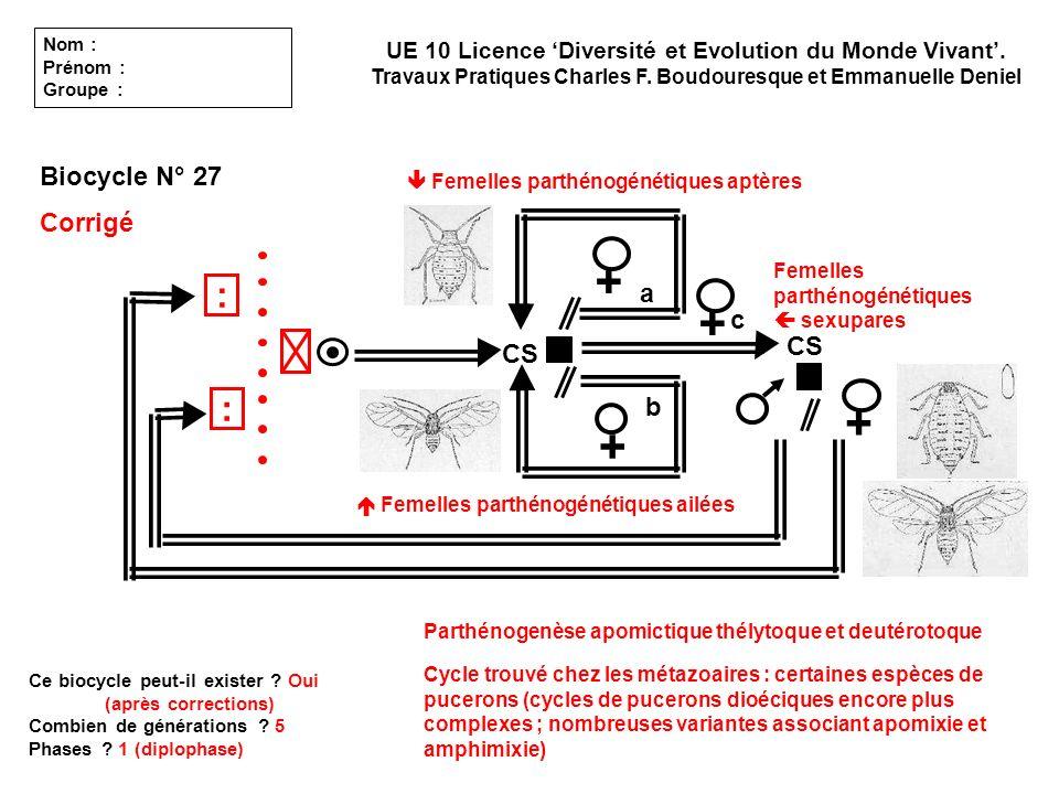 + + + + : : Biocycle N° 27 Corrigé a c CS CS b