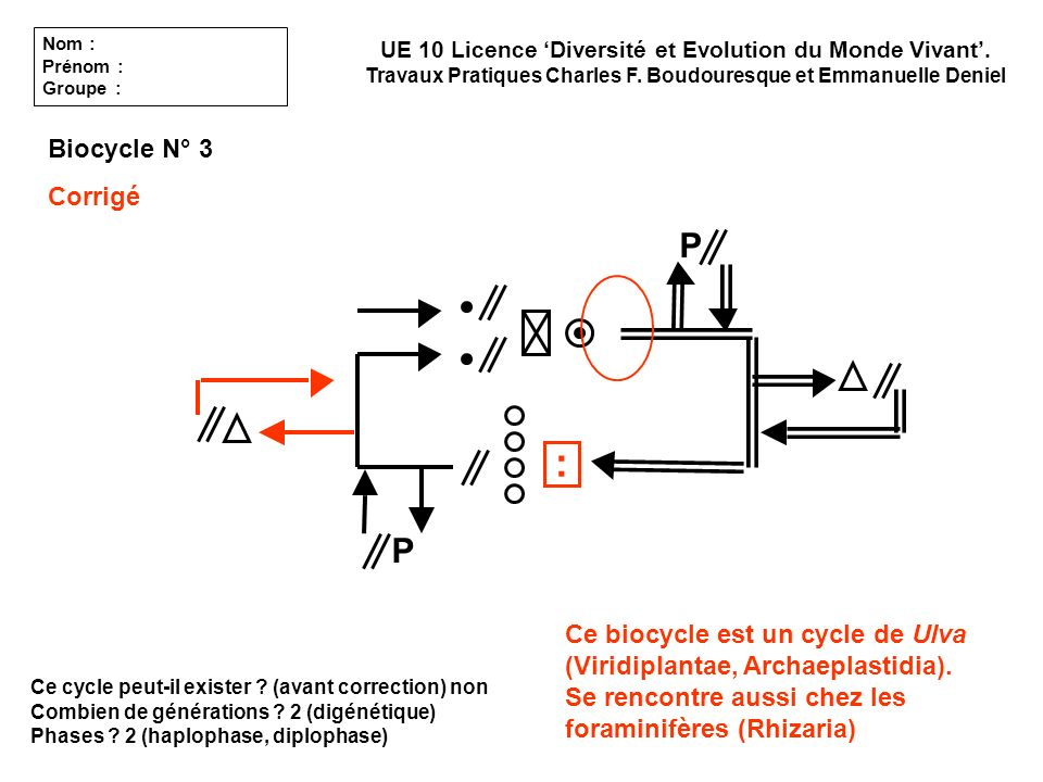 : P P Biocycle N° 3 Corrigé