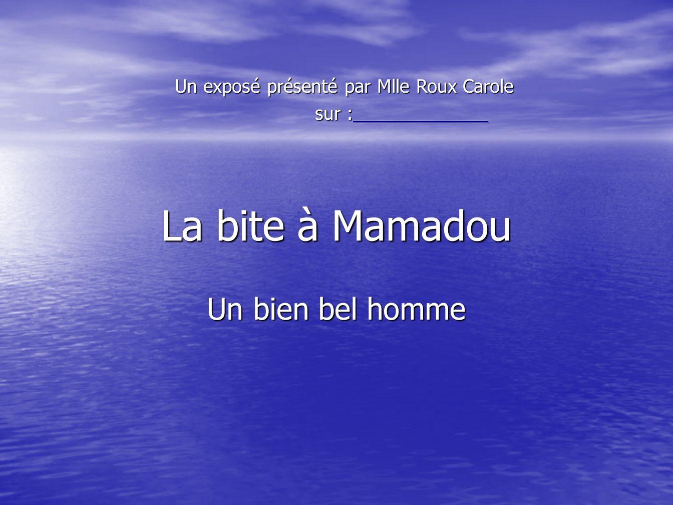La bite à Mamadou Un bien bel homme
