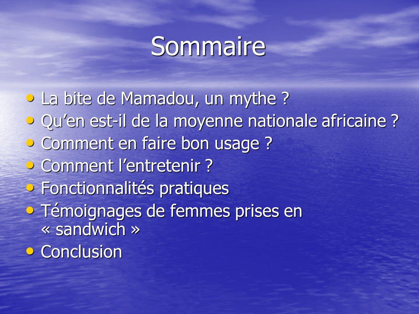 Sommaire La bite de Mamadou, un mythe
