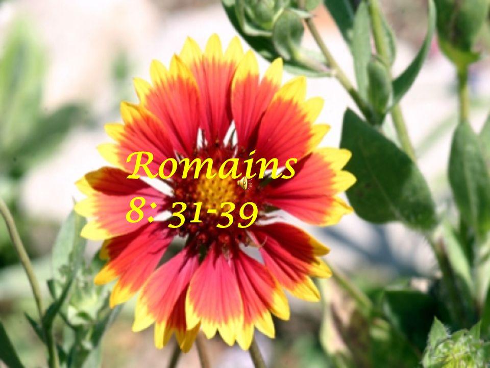 Romains 8: 31-39
