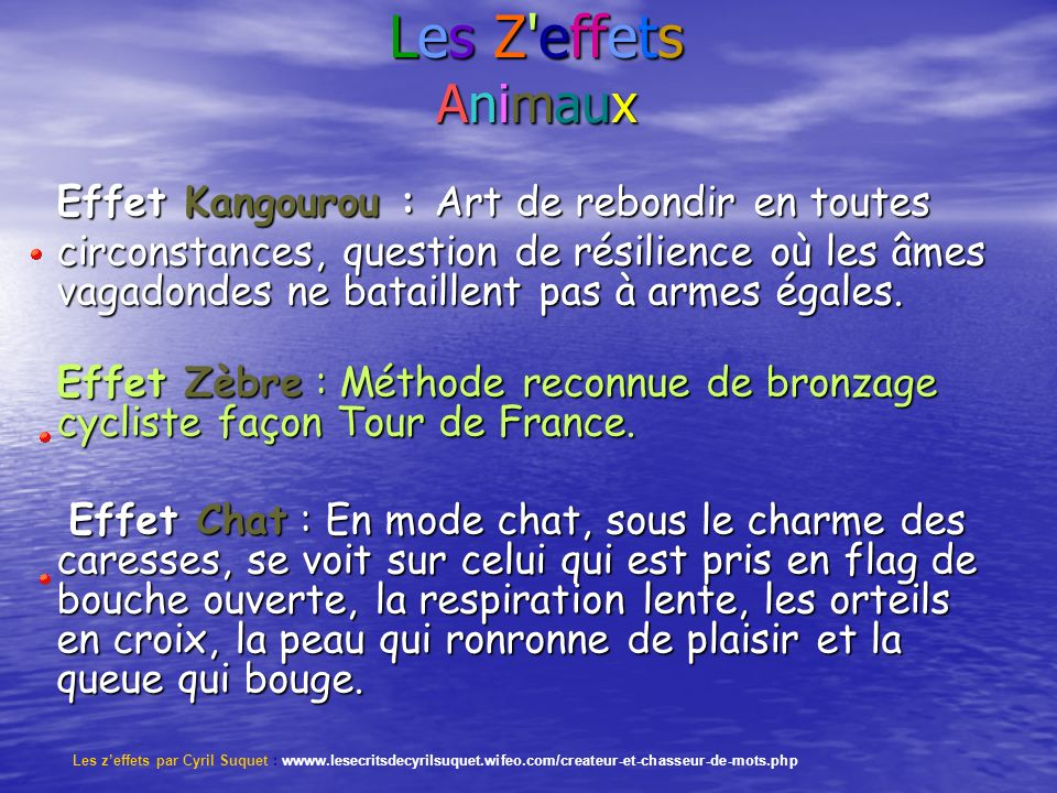 Les Z effets Animaux Effet Kangourou : Art de rebondir en toutes