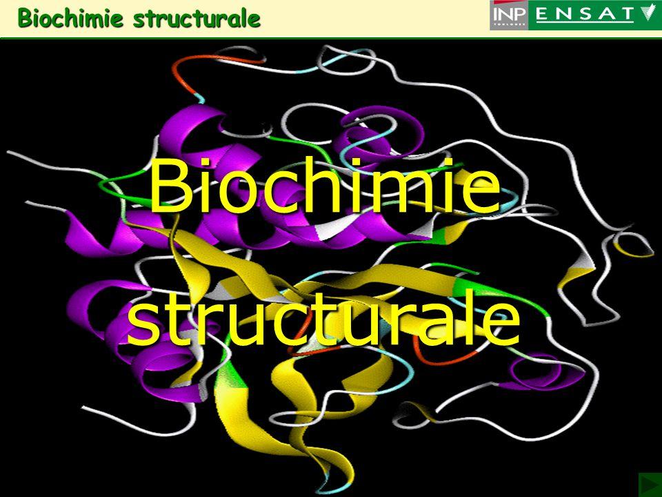 Biochimie structurale