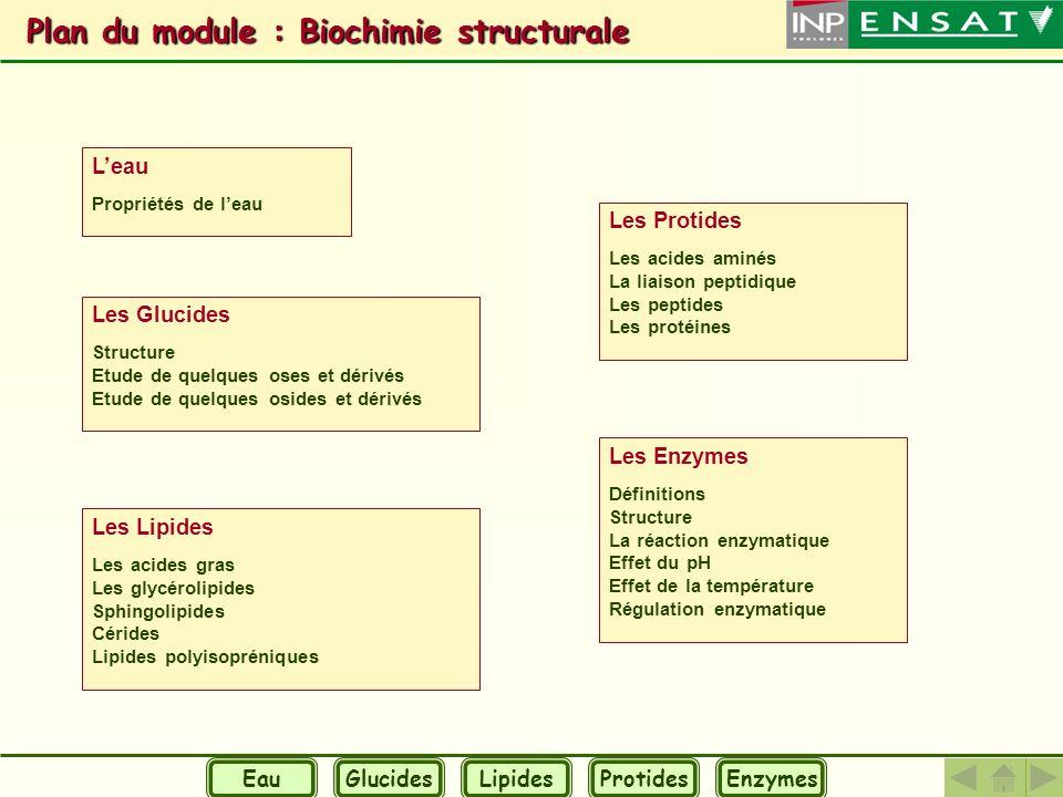 Plan du module : Biochimie structurale