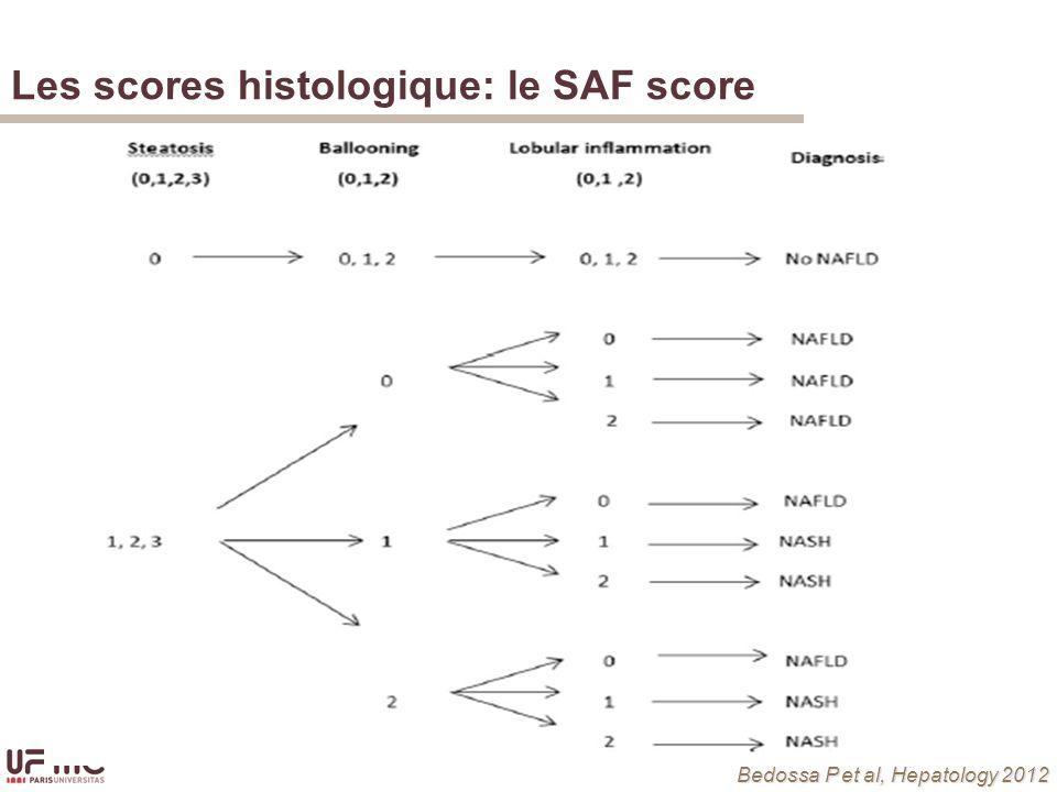 Les scores histologique: le SAF score