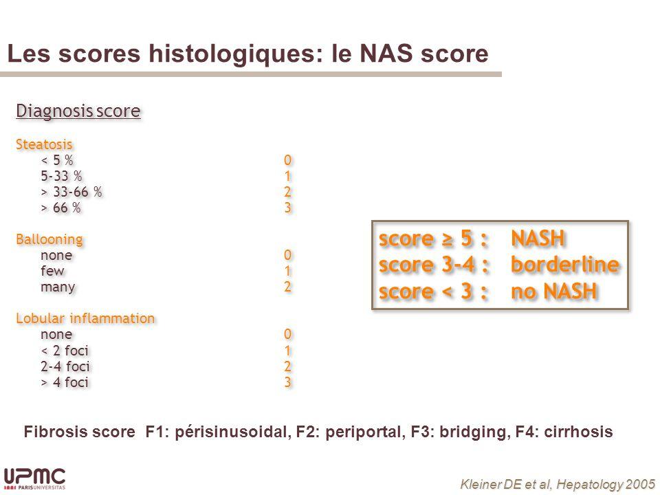 Les scores histologiques: le NAS score