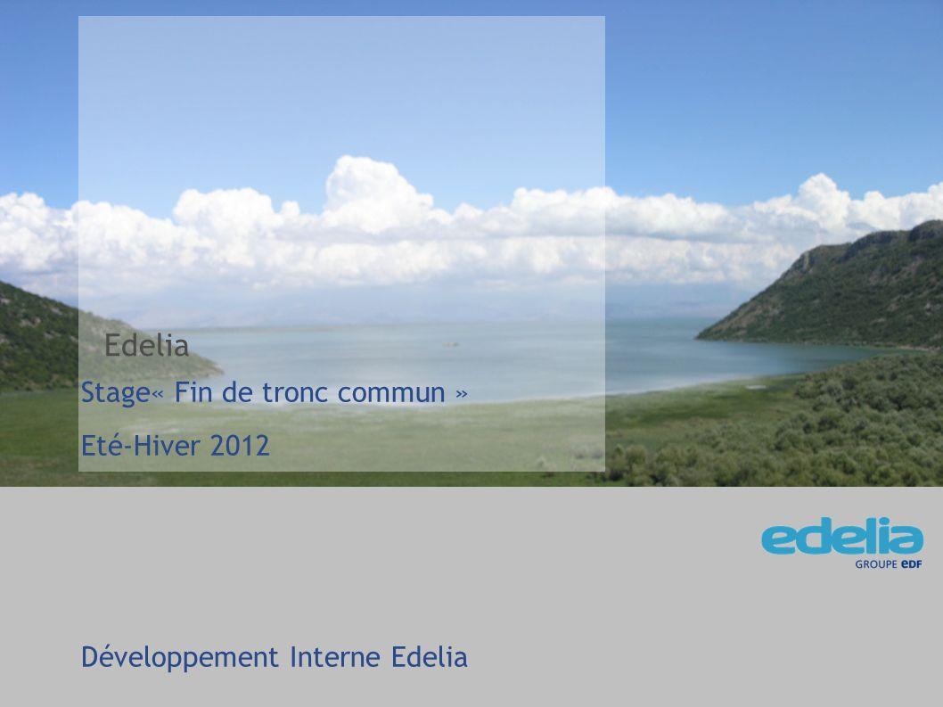 Edelia Stage« Fin de tronc commun » Eté-Hiver 2012
