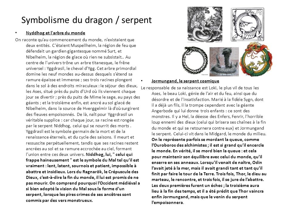 Symbolisme du dragon / serpent