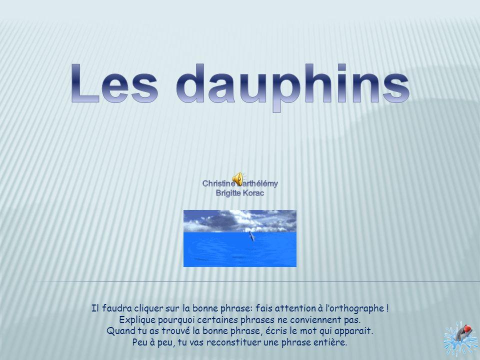 Les dauphins Christine Barthélémy. Brigitte Korac. Il faudra cliquer sur la bonne phrase: fais attention à l'orthographe !