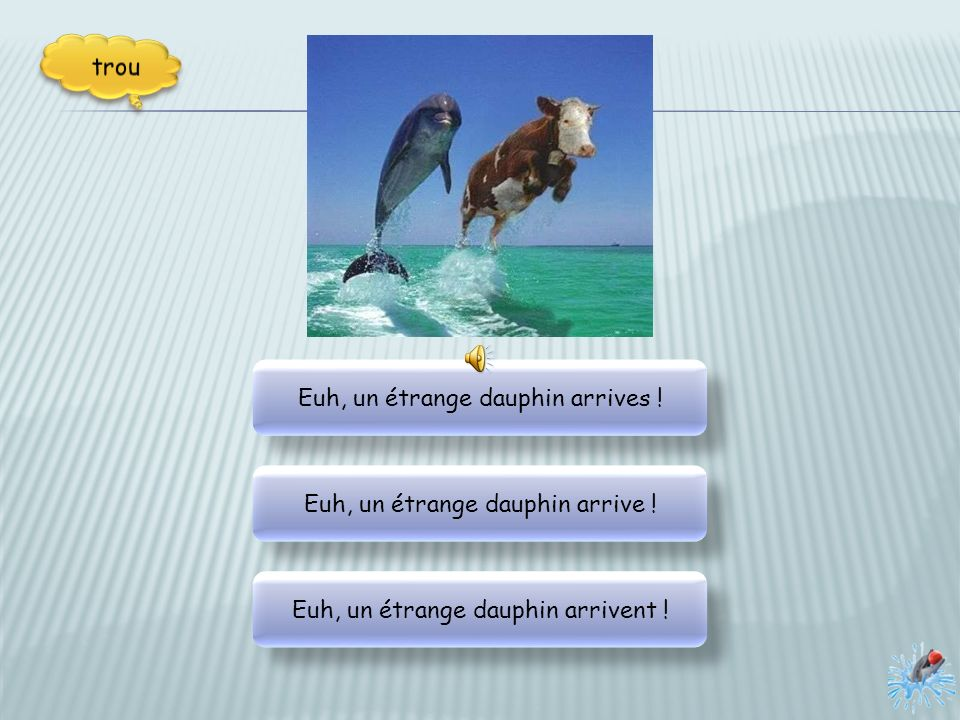Euh, un étrange dauphin arrives !