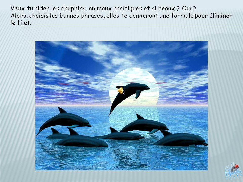 Veux-tu aider les dauphins, animaux pacifiques et si beaux Oui