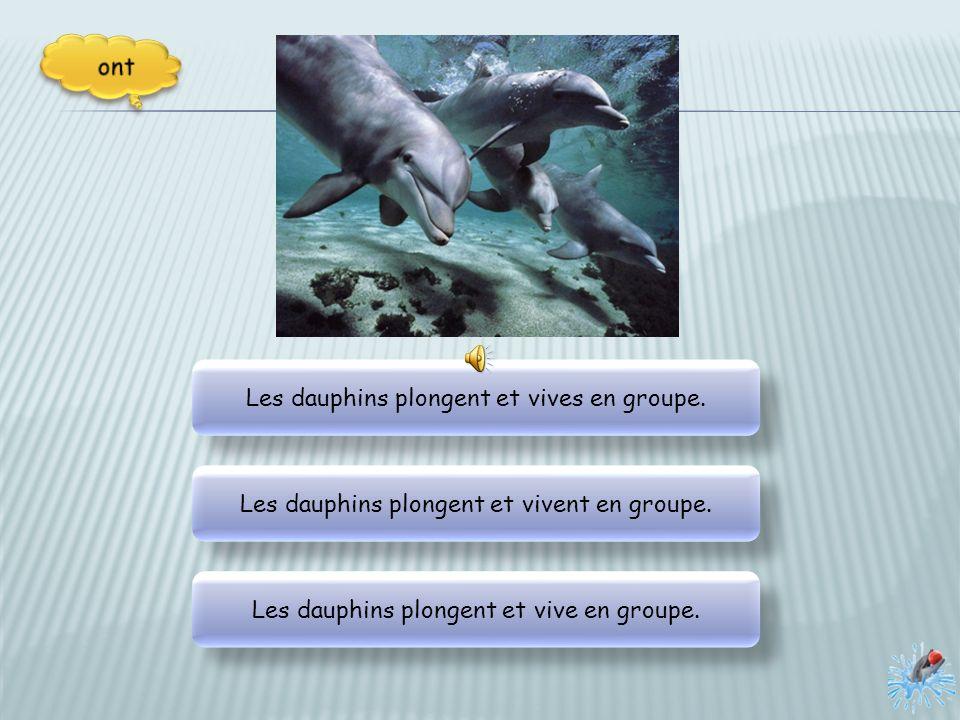 Les dauphins plongent et vives en groupe.