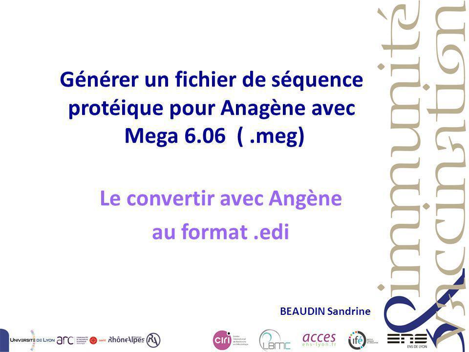 Le convertir avec Angène au format .edi