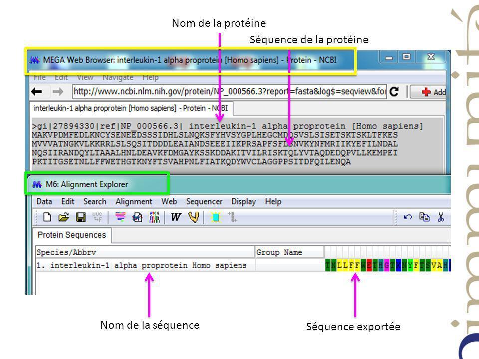 Nom de la protéine Séquence de la protéine Nom de la séquence Séquence exportée