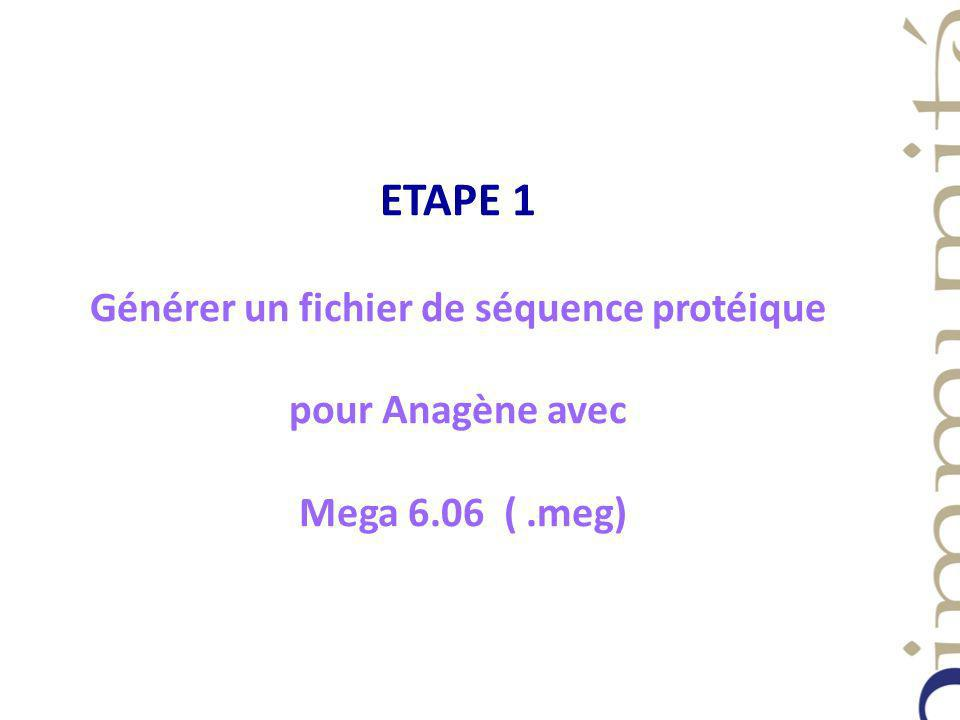 ETAPE 1 Générer un fichier de séquence protéique pour Anagène avec Mega 6.06 ( .meg)