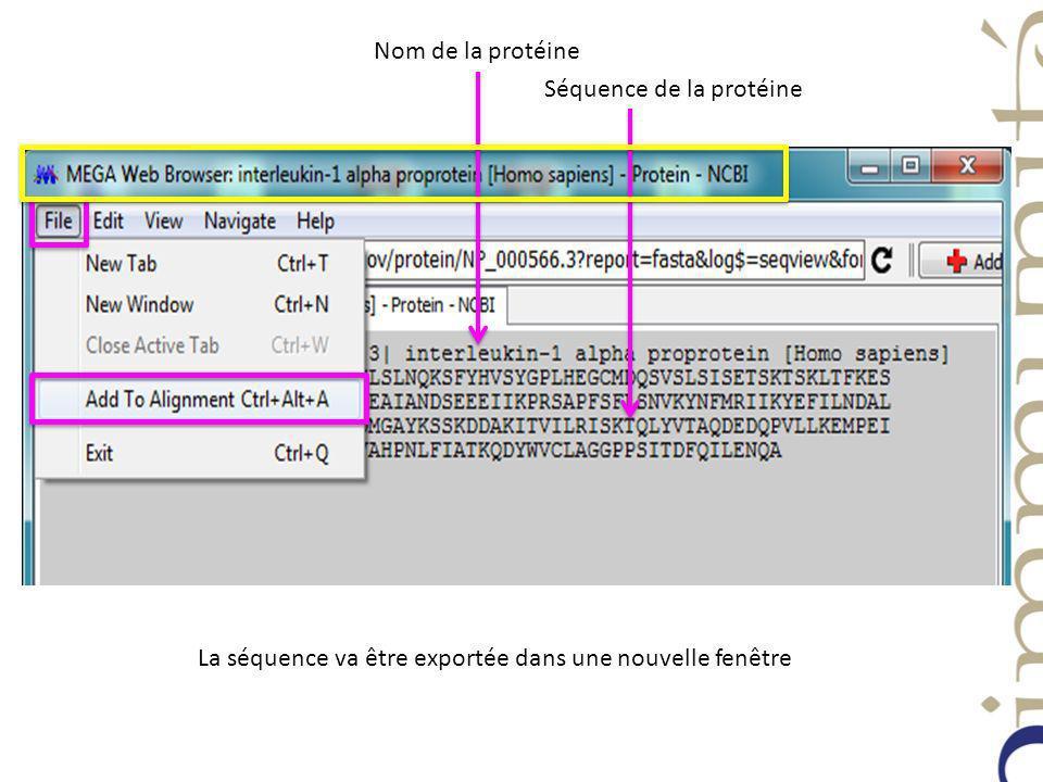 Nom de la protéine Séquence de la protéine La séquence va être exportée dans une nouvelle fenêtre