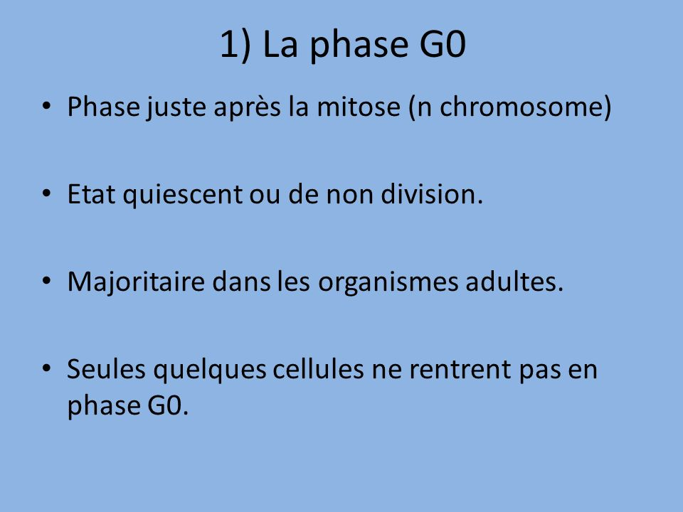 1) La phase G0 Phase juste après la mitose (n chromosome)