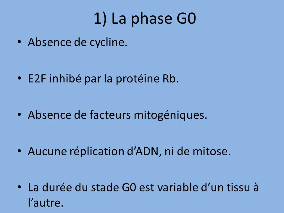1) La phase G0 Absence de cycline. E2F inhibé par la protéine Rb.