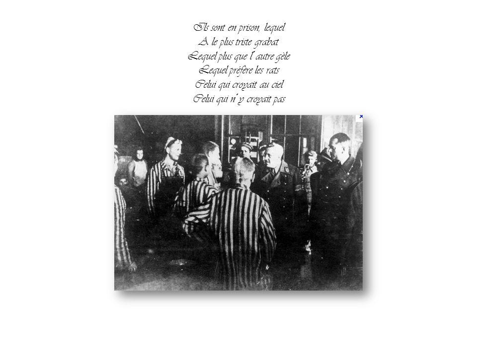 Ils sont en prison, lequel A le plus triste grabat