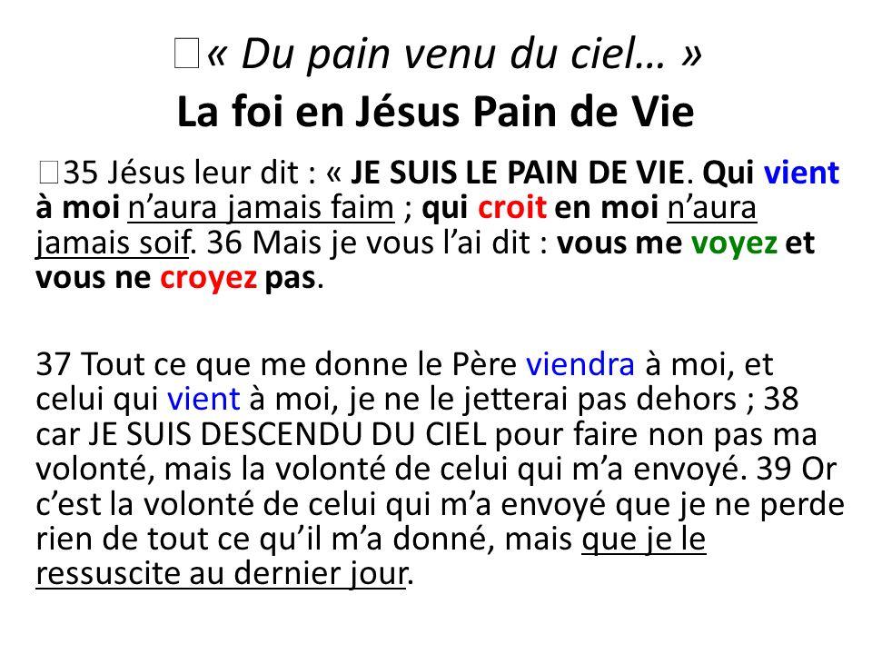 « Du pain venu du ciel… » La foi en Jésus Pain de Vie
