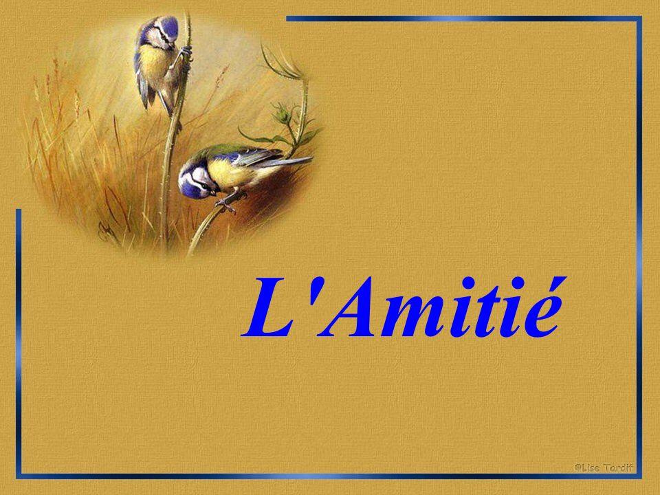 L Amitié