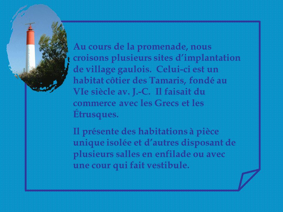 Au cours de la promenade, nous croisons plusieurs sites d'implantation de village gaulois. Celui-ci est un habitat côtier des Tamaris, fondé au VIe siècle av. J.-C. Il faisait du commerce avec les Grecs et les Étrusques.